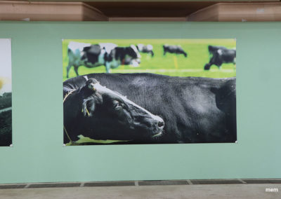 2018_08_mem_Ausstellung-495